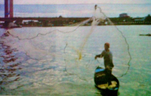 Patin Sumsel Sumbang 65 Produksi Nasional