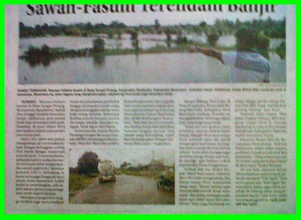 Sawah-Fasum Terendam Banjir