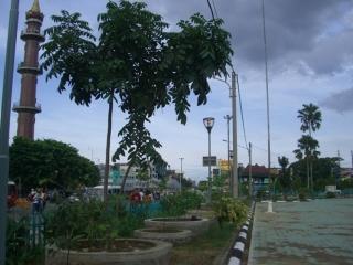 Monpera Jadi Kawasan dan Taman Terbuka