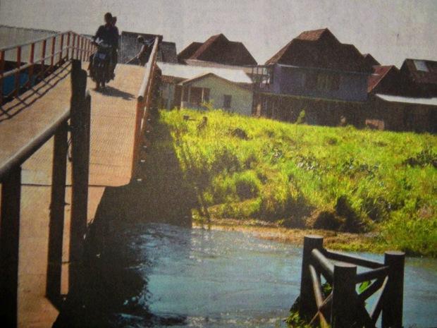 Rumput Ancam Jembatan