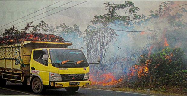 Hutan Terbakar, Aap Kian Pekat