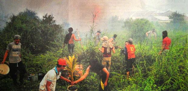 Api Mendekati Kawasan Hutan Negara