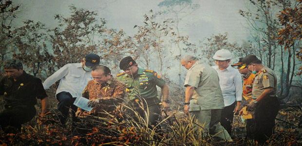 Presiden Joko Widodo Jalan 200 Meter Lihat Gambut Terbakar